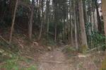 長瀞アルプス山道